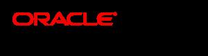 O-NetSuite-SolutionProvider-horiz-rgb-300x81